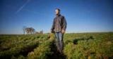 В Украине приняли закон о поддержке молодых фермеров: кому и чем будут помогать